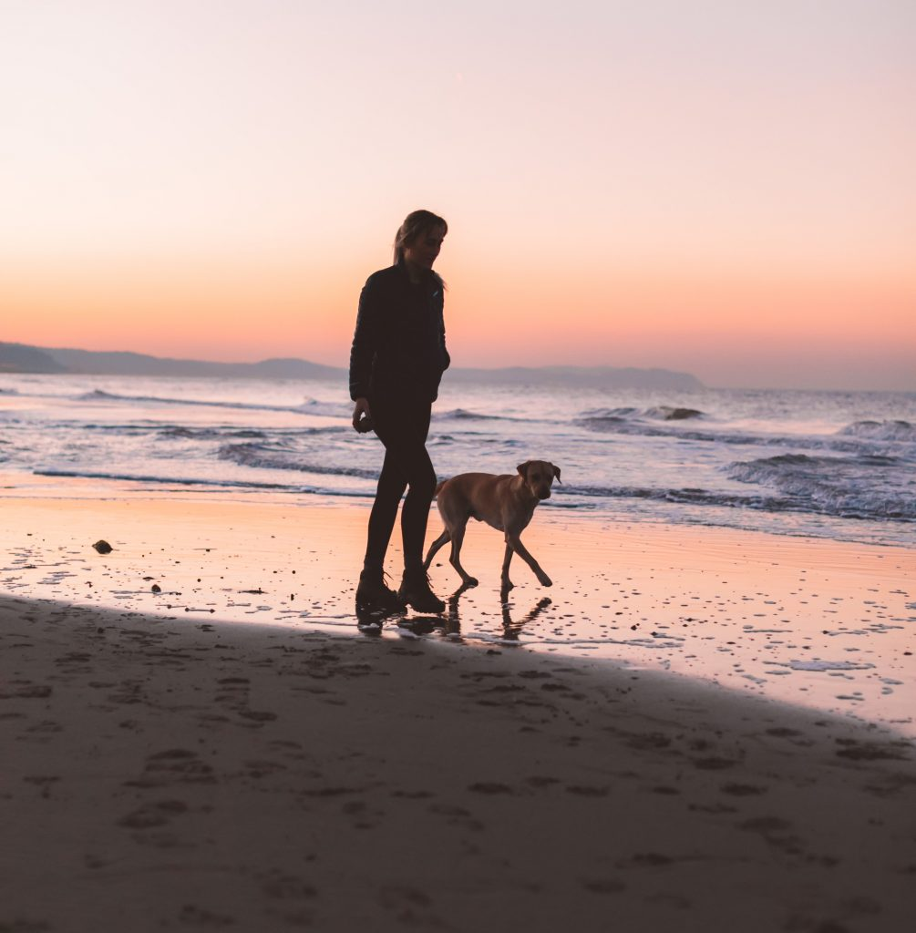2 Night Stay Gift Voucher - Dog House Margate B&B